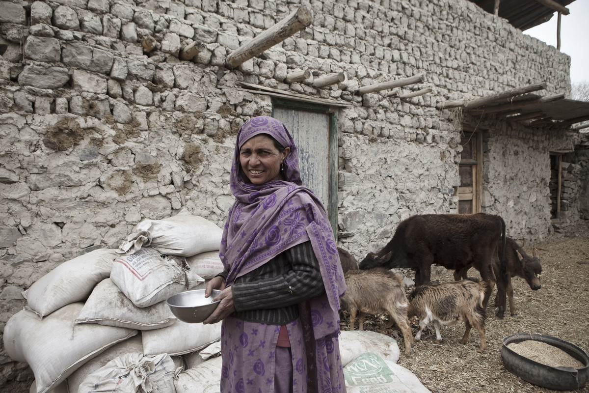 agriculture and food security in pakistan The pakistan food security bulletin is produced by the vulnerability   performance including agriculture production, commodity prices.